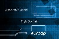 Konfiguracja serwera aplikacji – tryb Domain